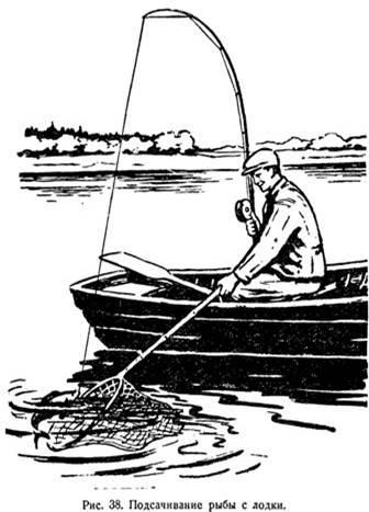 передача как ловят рыбу