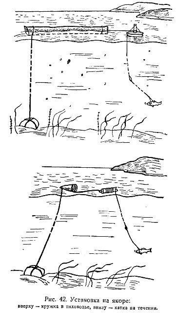 как ловить на кружок
