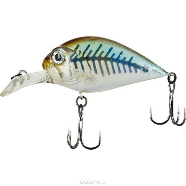 Товары для рыбалки и охоты.